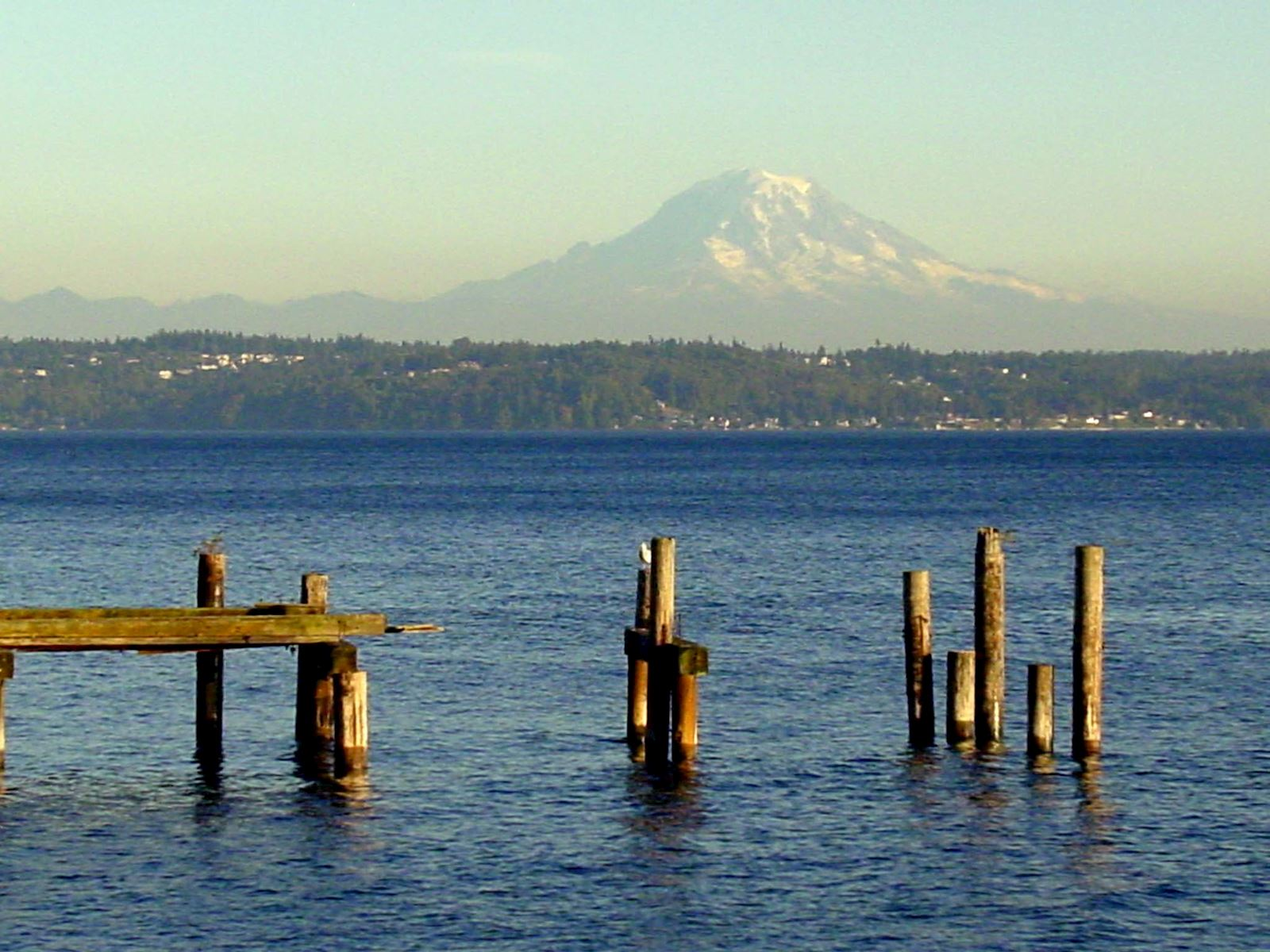 Picture of Vashon
